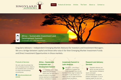 Financial advisors website